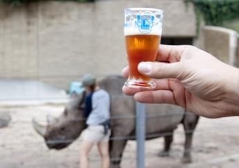 brew zoo